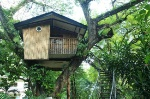 pasonanca-park-tree-house