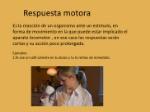 respuestas-motoras-y-glandularesactos-involuntarios-acto-y-arco-reflejoactos-voluntarios-2-728
