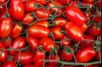 come-conservare-i-pomodori-salsa