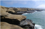 Rocas-sedimentarias-del-Cretacico-en-la-costa-Pacifico-Cretaceous-sedimetary-rocks-on