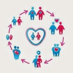 Жизненный-цикл-семьи-2-300x300