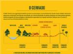 Infografico_Extrativismo1