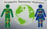 genoma-humano-696x443