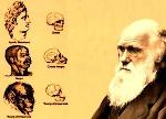Darwinismo Social -
