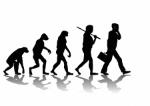 bigstock-Evolution-2653147-copy