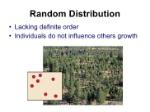 population-ecology-16-728