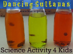 Dancing-Sultanas-500x375