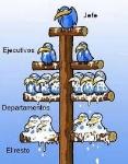 jerarquias