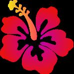 hawaii-clipart-transparent-14