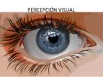 percepcion-visual-1-638