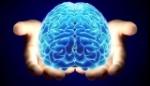 7-curiosidades-del-cerebro-que-te-haran-pensar-3-640x368