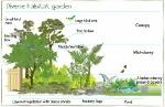 Diverse-habitat-garden