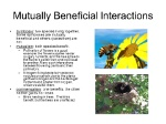 Mutually+Beneficial+Interactions