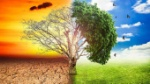 cambio-climatico-e1501269371575-678x381