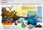 ecosistemas_infografia_BIG