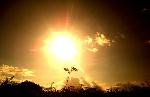 sol-lindo-sol
