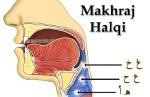 Makhraj-Huruf-Halqi-halkum