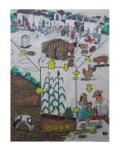 Agrosistema+¿Cuales+son+los+componentes+del+agrosistema