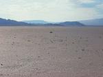 anthony gormely - rearranged desert
