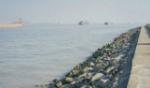 海鸥岛01