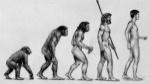 Darwin-evolucion-interior