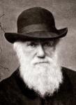 220px-Charles_Darwin_1880