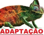 adaptação