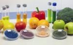 química-de-los-alimentos-744x465