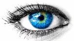 ojo b