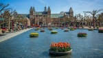 amsterdam tulip festival nc
