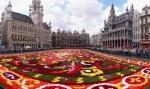 Brussels_floral_carpet_B