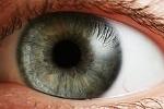 220px-Eye_iris