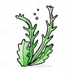 depositphotos_101866330-stock-illustration-cartoon-illustration-of-seaweed
