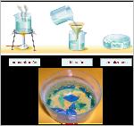 Cristalizacion1