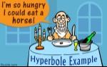 1200-378565-hyperbole-examples