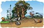 45303142-animals-forest-habitat