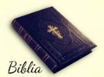 significado-palabra-biblia-720x540