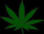 weed-hi