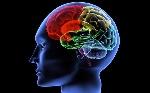 color-brain-1280x800