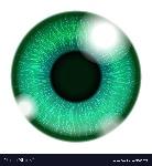 human-green-eye-vector-1188072