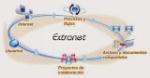 extranet (1)
