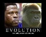 Anti-Patrick_Ewing_Evolution_Image