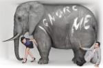etc_elephantroom50__01__630x420
