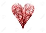 Close up human blood vessels in heart symbol 版權商用圖片 - 52936269