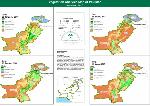 704599-Vegetation Analysis Map of Pakistan