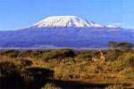 kilimanjaro_media_1308864276
