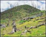 20080318-deforestaion in Yunnan