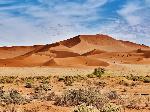 le-desert-namib-dunes-orange