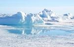 desieto polar