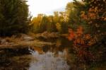 autumn-3755754_640